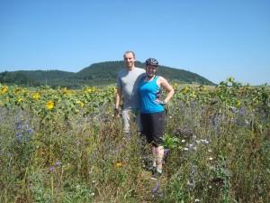 blog1-Sonnenblumen