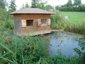 In (Dorfname vergessen) gibt es einen Quellsee, der konstant 16°C Wassertemperatur hat.